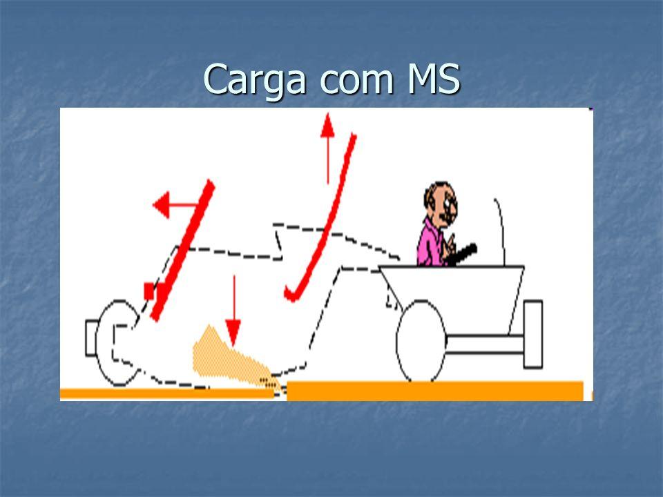 Carga com MS