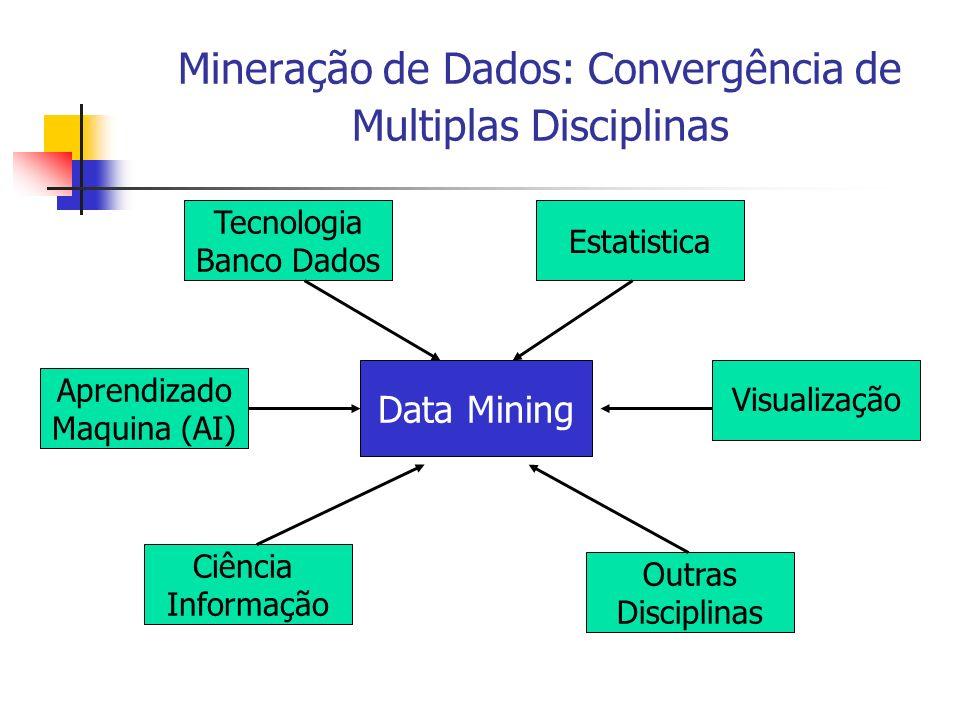 Mineração de Dados: Convergência de Multiplas Disciplinas Data Mining Tecnologia Banco Dados Estatistica Outras Disciplinas Ciência Informação Aprendi