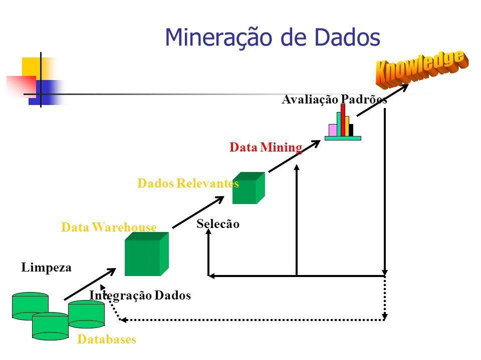 Mineração de Dados Limpeza Integração Dados Databases Data Warehouse Dados Relevantes Selecão Data Mining Avaliação Padrões