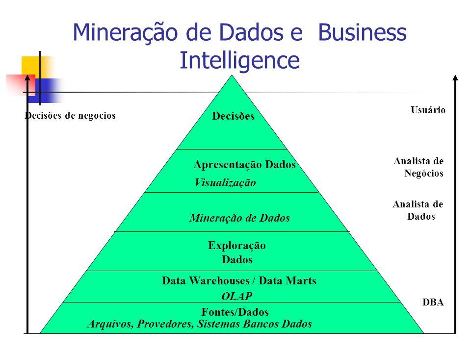 Mineração de Dados e Business Intelligence Decisões de negocios Usuário Analista de Negócios Analista de Dados DBA Decisões Apresentação Dados Visuali