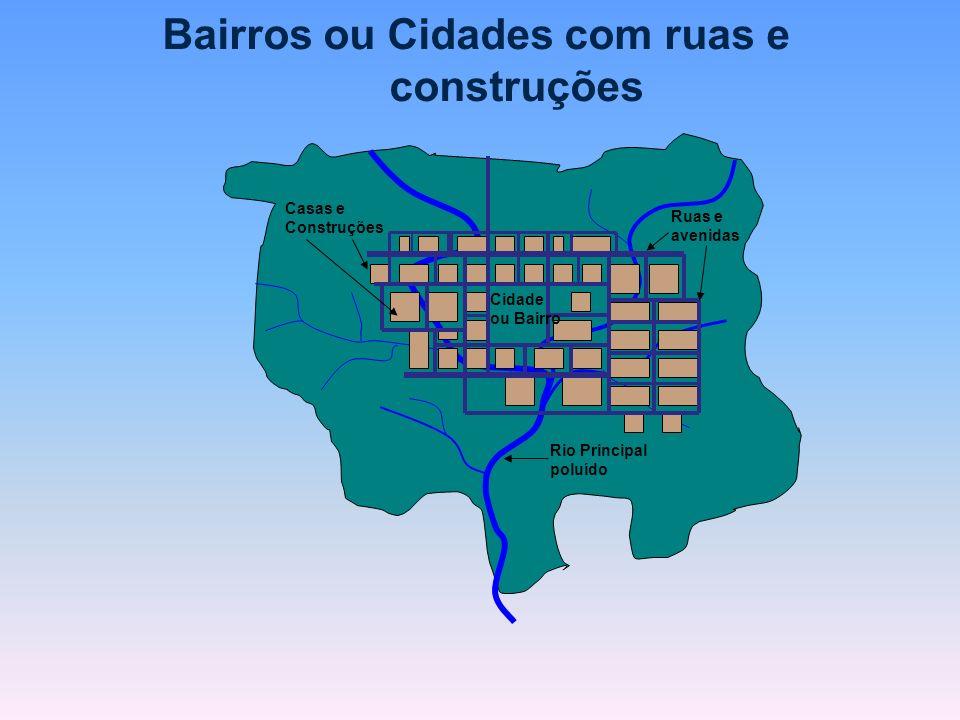 Bairros ou Cidades com ruas e construções Rio Principal poluído Ruas e avenidas Casas e Construções Cidade ou Bairro