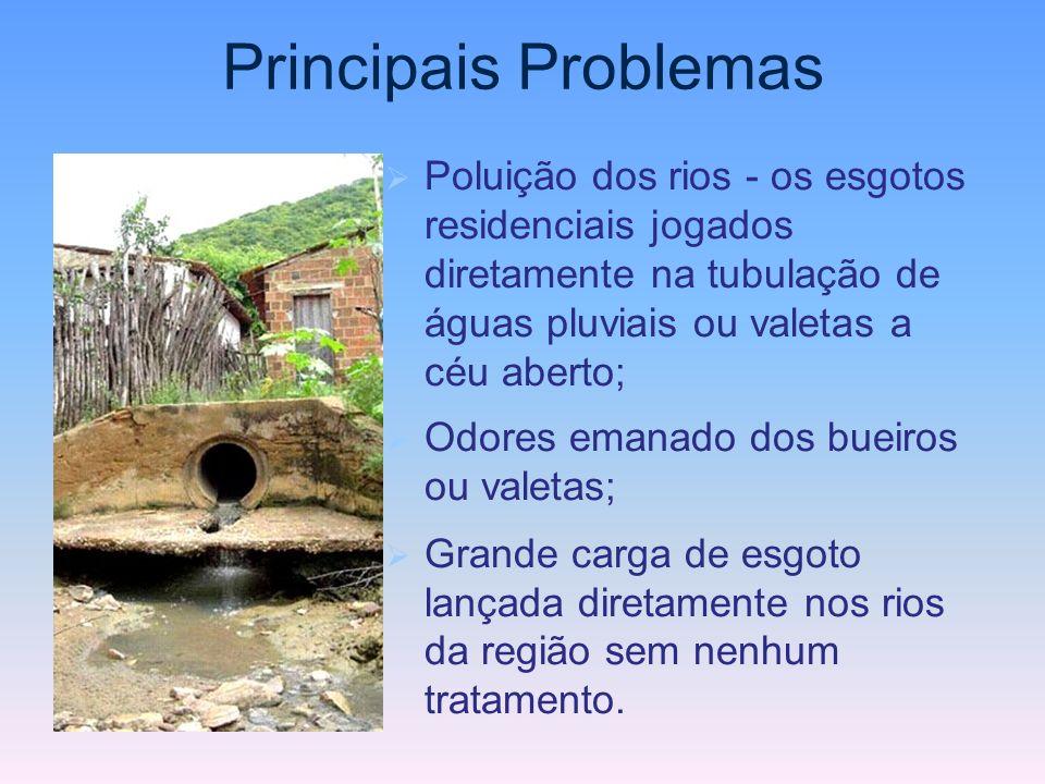 Principais Problemas Poluição dos rios - os esgotos residenciais jogados diretamente na tubulação de águas pluviais ou valetas a céu aberto; Odores em