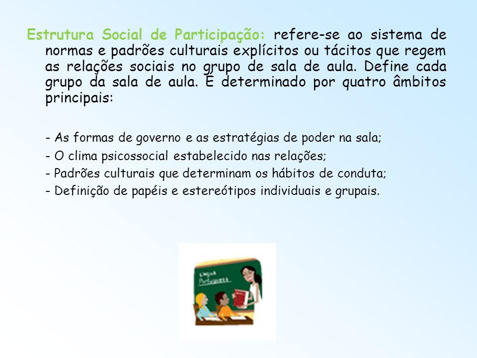 Estrutura Social de Participação: refere-se ao sistema de normas e padrões culturais explícitos ou tácitos que regem as relações sociais no grupo de s