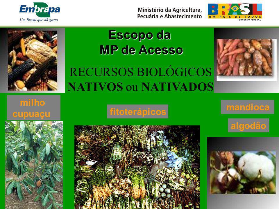 Escopo da MP de Acesso MP de Acesso RECURSOS BIOLÓGICOS NATIVOS ou NATIVADOS mandioca milho cupuaçu algodão fitoterápicos