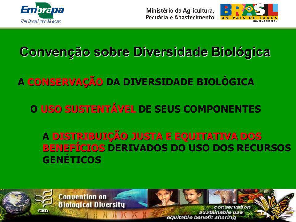 Convenção sobre Diversidade Biológica CONSERVAÇÃO A CONSERVAÇÃO DA DIVERSIDADE BIOLÓGICA USO SUSTENTÁVEL O USO SUSTENTÁVEL DE SEUS COMPONENTES DISTRIB