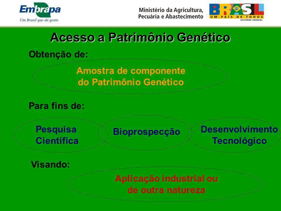 Acesso a Patrimônio Genético Amostra de componente do Patrimônio Genético Para fins de: Desenvolvimento Tecnológico Bioprospecção Obtenção de: Pesquis