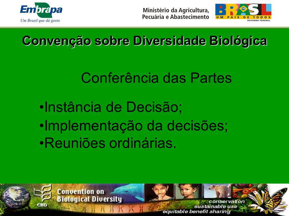 Convenção sobre Diversidade Biológica COP 1 – Nassau, Bahamas - 1994; COP 2 – Jacarta, Indonésia - 1995; COP 3 – Buenos Aires, Argentina - 1996; COP 4 – Bratislava, Eslováquia - 1998; COP 5 – Nairobi, Quênia - 2000; COP 6 – Haia, Holanda - 2002; COP 7 – Kuala Lumpur, Indonésia – 2004; COP 8 – ?, Brasil – 2006.