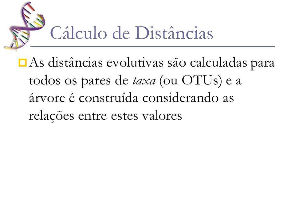 Cálculo de Distâncias As distâncias evolutivas são calculadas para todos os pares de taxa (ou OTUs) e a árvore é construída considerando as relações e