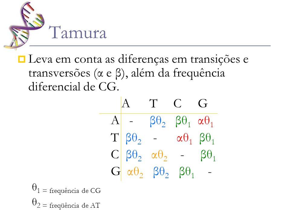 Tamura Leva em conta as diferenças em transições e transversões (α e β), além da frequência diferencial de CG. A T C G A - βθ 2 βθ 1 αθ 1 T βθ 2 - αθ