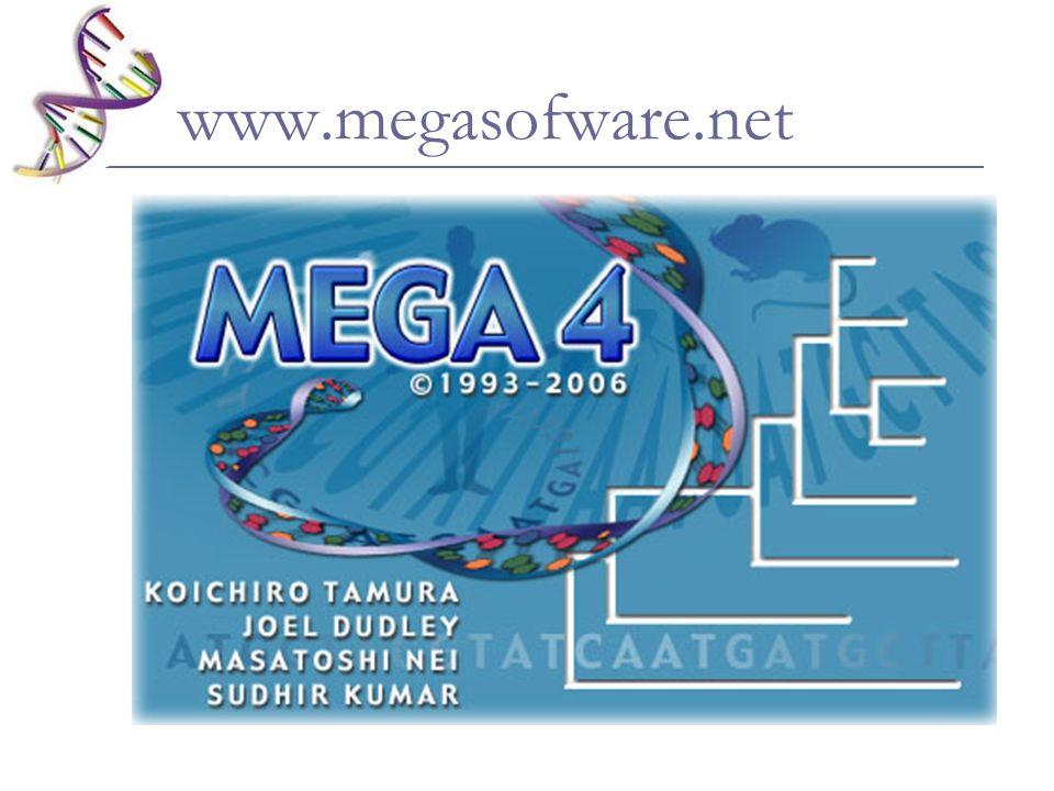 www.megasofware.net