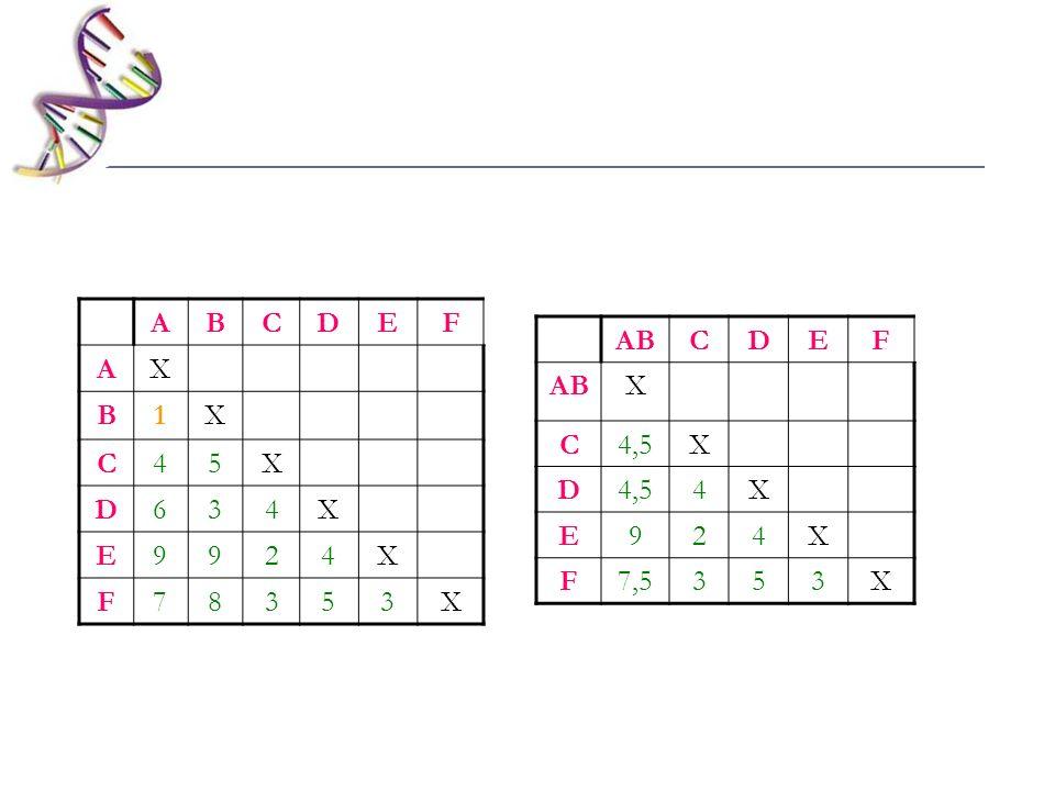 ABCDEF X C4,5X D 4X E924X F7,5353X ABCDEF AX B1X C45X D634X E9924X F78353X