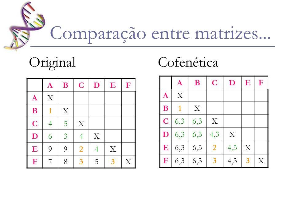 Comparação entre matrizes... Original Cofenética ABCDEF AX B1X C6,3 X D 4,3X E6,3 24,3X F6,3 34,33X ABCDEF AX B1X C45X D634X E9924X F78353X