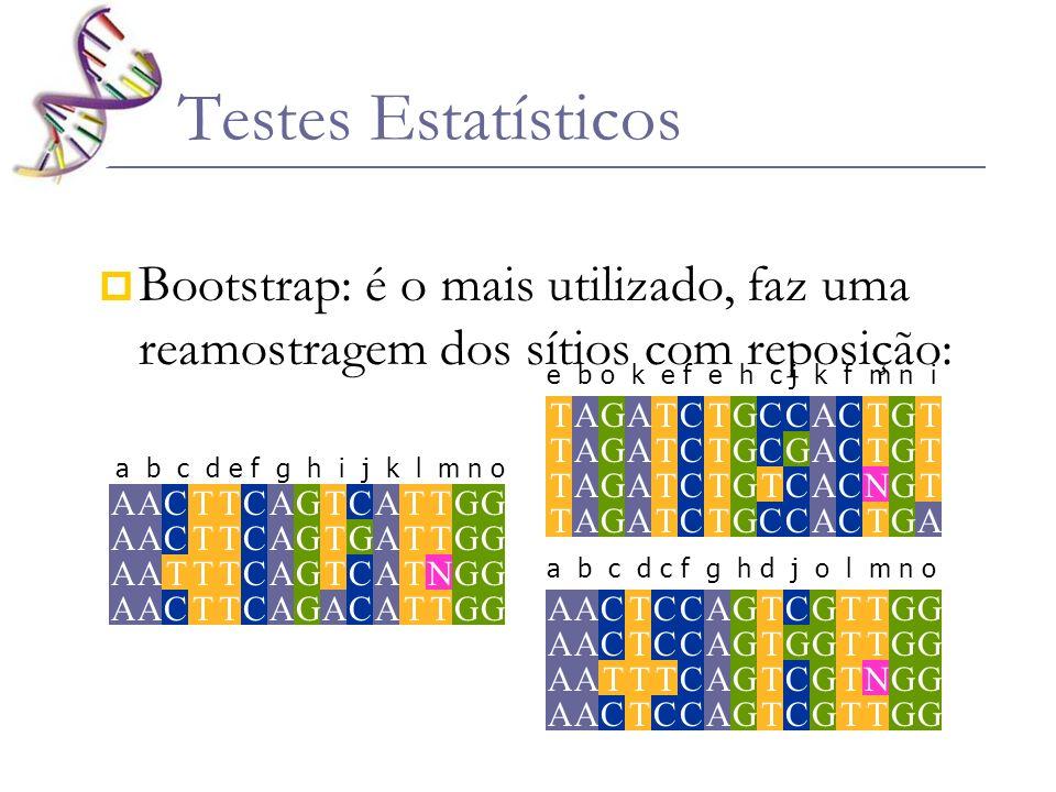 Testes Estatísticos Bootstrap: é o mais utilizado, faz uma reamostragem dos sítios com reposição: G AA A A A C C CA T TT T T TT T T C C C C G G G G G