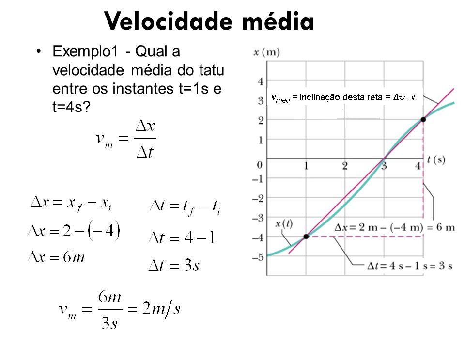 Exemplo1 - Qual a velocidade média do tatu entre os instantes t=1s e t=4s? Velocidade média