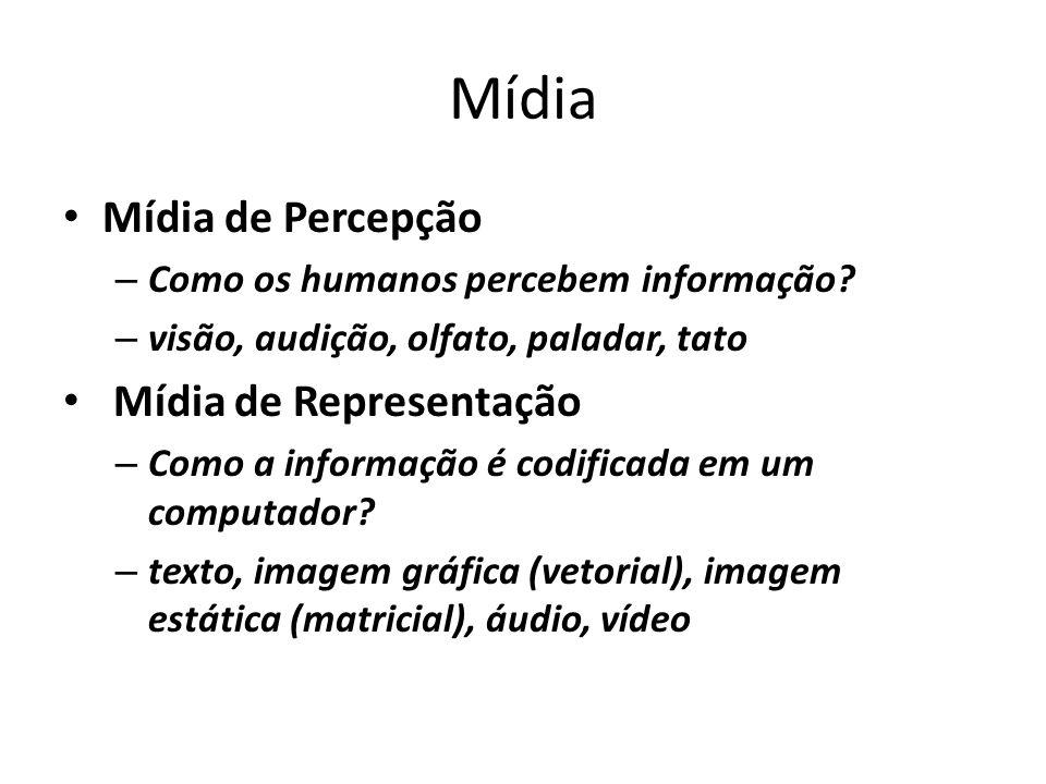 Mídia Mídia de Percepção – Como os humanos percebem informação? – visão, audição, olfato, paladar, tato Mídia de Representação – Como a informação é c