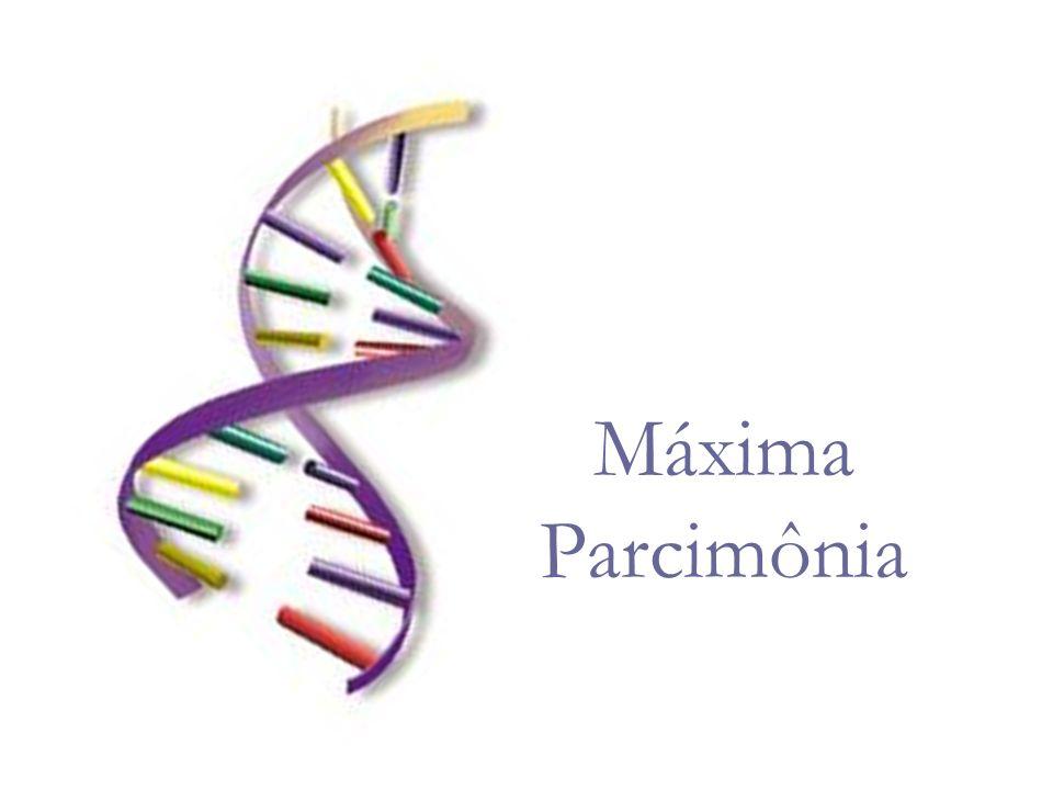Em estudos morfológicos, a polaridade dos caracteres é feita através da comparação com os out-groups, e os caracteres polarizados resultantes formam a base da análise.