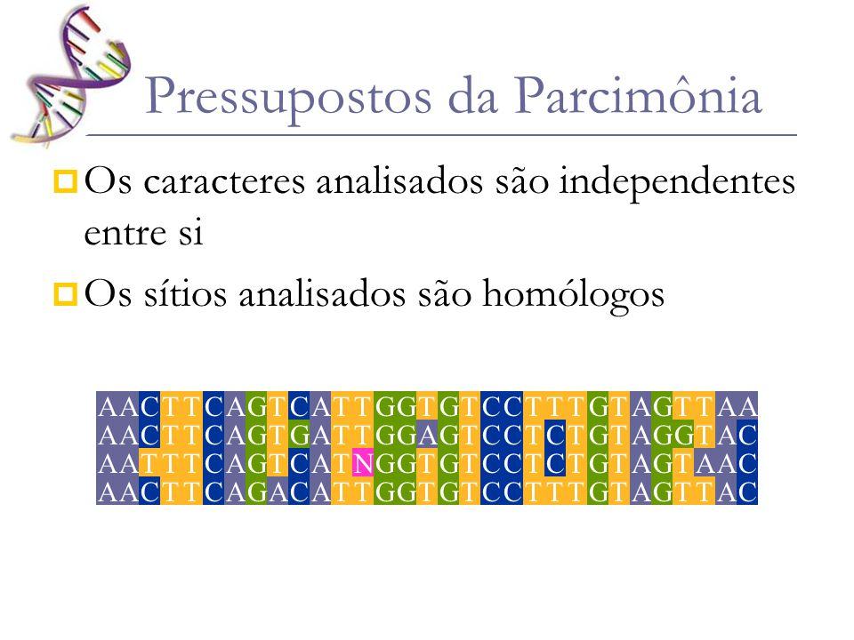 Pressupostos da Parcimônia Os caracteres analisados são independentes entre si Os sítios analisados são homólogos