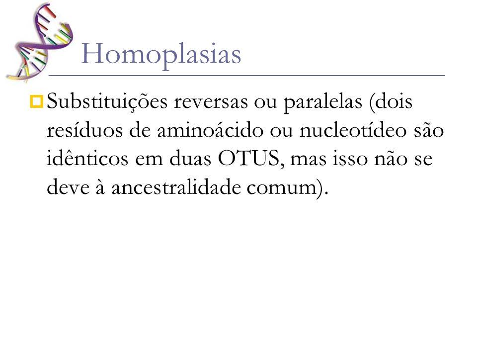 Homoplasias Substituições reversas ou paralelas (dois resíduos de aminoácido ou nucleotídeo são idênticos em duas OTUS, mas isso não se deve à ancestr