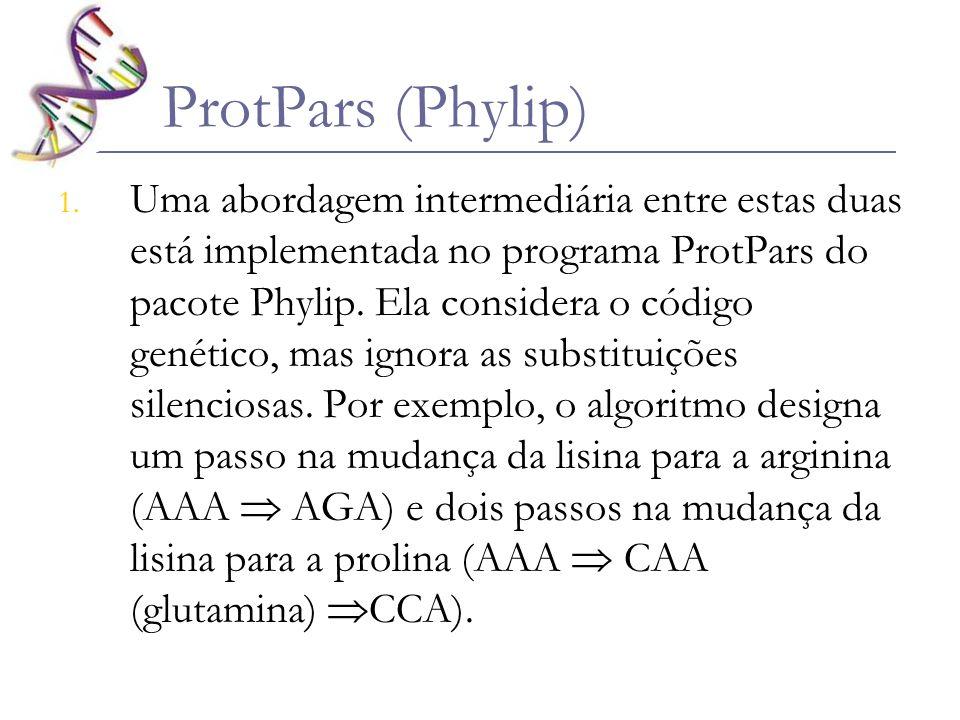 ProtPars (Phylip) 1. Uma abordagem intermediária entre estas duas está implementada no programa ProtPars do pacote Phylip. Ela considera o código gené