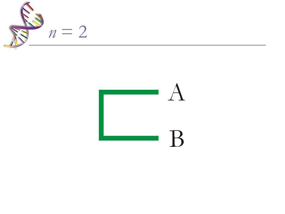 n = 2