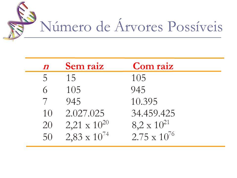 Número de Árvores Possíveis n Sem raiz Com raiz 5 15 105 6 105 945 7 945 10.395 10 2.027.025 34.459.425 20 2,21 x 10 8,2 x 10 50 2,83 x 10 2.75 x 10 7