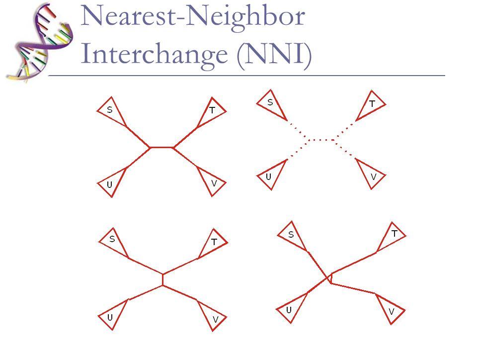 Nearest-Neighbor Interchange (NNI)