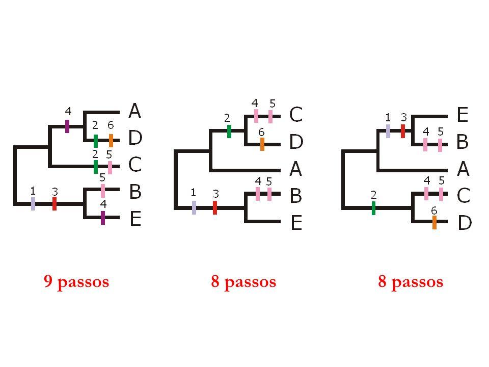 Métodos baseados em Parcimônia Grupo de métodos relacionados que têm como objetivo comum minimizar o número de passos evolutivos.