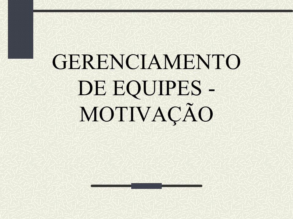 GERENCIAMENTO DE EQUIPES - MOTIVAÇÃO