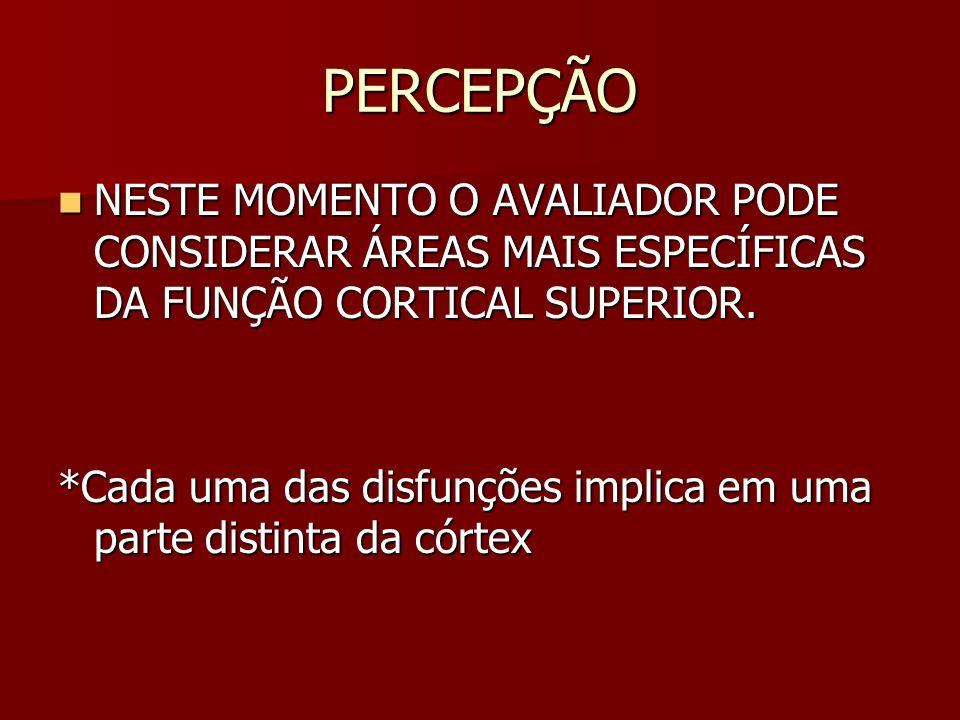 PERCEPÇÃO NESTE MOMENTO O AVALIADOR PODE CONSIDERAR ÁREAS MAIS ESPECÍFICAS DA FUNÇÃO CORTICAL SUPERIOR.