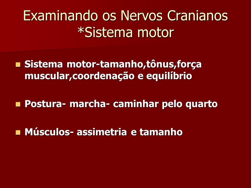 Examinando os Nervos Cranianos *Sistema motor Sistema motor-tamanho,tônus,força muscular,coordenação e equilíbrio Sistema motor-tamanho,tônus,força mu