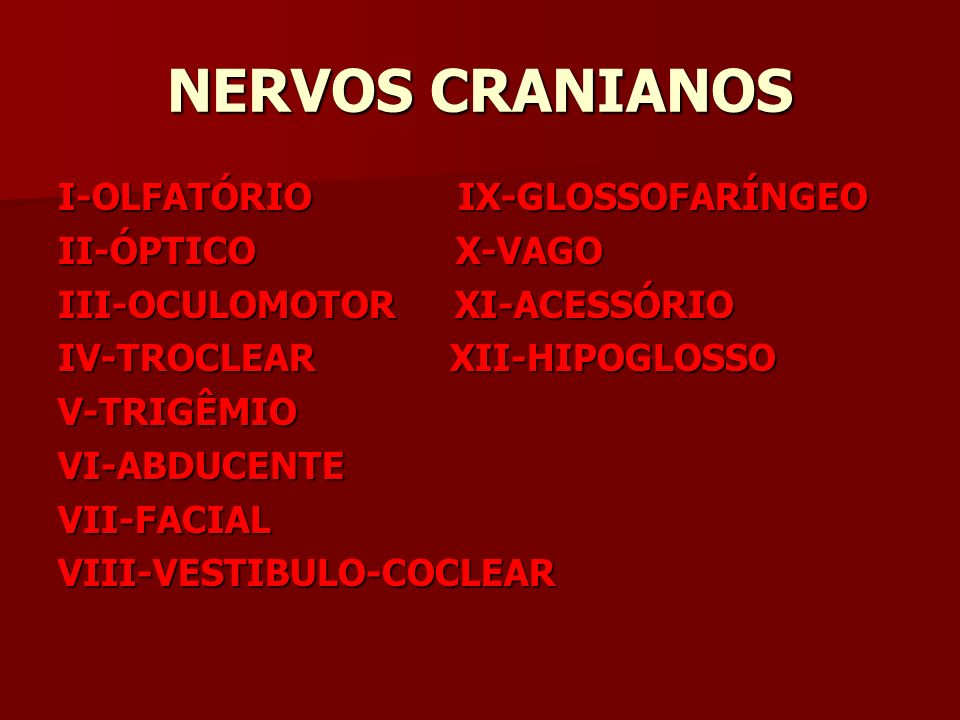 NERVOS CRANIANOS I-OLFATÓRIO IX-GLOSSOFARÍNGEO II-ÓPTICO X-VAGO III-OCULOMOTOR XI-ACESSÓRIO IV-TROCLEAR XII-HIPOGLOSSO V-TRIGÊMIOVI-ABDUCENTEVII-FACIALVIII-VESTIBULO-COCLEAR