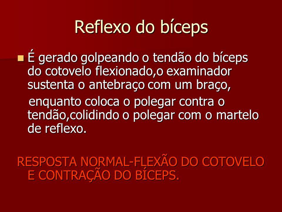 Reflexo do bíceps É gerado golpeando o tendão do bíceps do cotovelo flexionado,o examinador sustenta o antebraço com um braço, É gerado golpeando o te