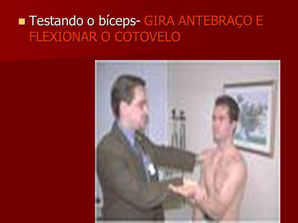 Testando o bíceps- GIRA ANTEBRAÇO E FLEXIONAR O COTOVELO Testando o bíceps- GIRA ANTEBRAÇO E FLEXIONAR O COTOVELO