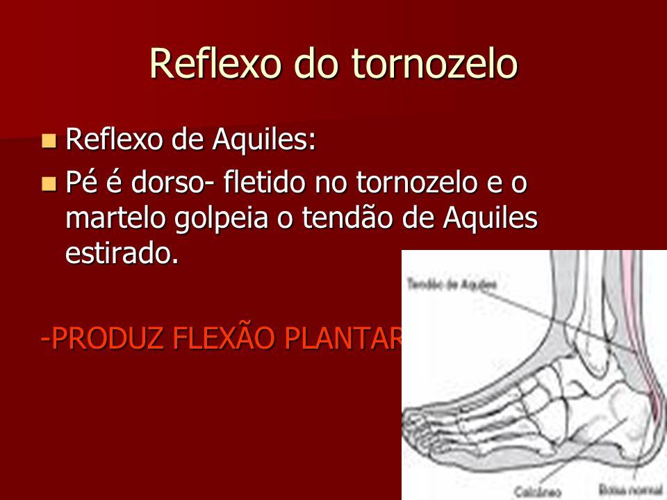 Reflexo do tornozelo Reflexo de Aquiles: Reflexo de Aquiles: Pé é dorso- fletido no tornozelo e o martelo golpeia o tendão de Aquiles estirado. Pé é d