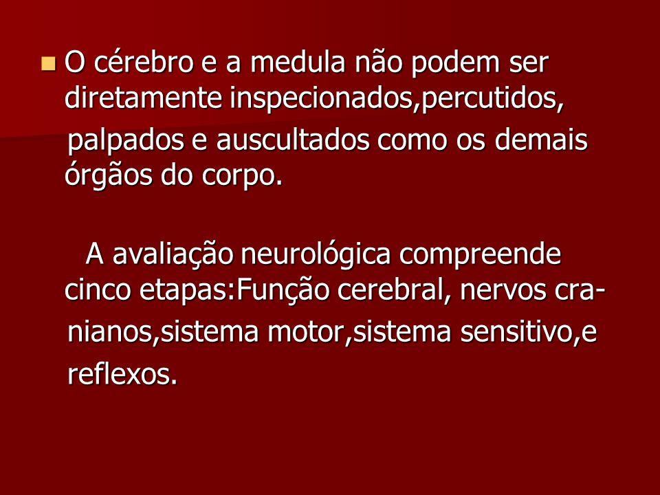 O cérebro e a medula não podem ser diretamente inspecionados,percutidos, O cérebro e a medula não podem ser diretamente inspecionados,percutidos, palpados e auscultados como os demais órgãos do corpo.