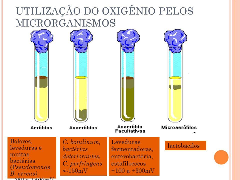 UTILIZAÇÃO DO OXIGÊNIO PELOS MICRORGANISMOS Bolores, leveduras e muitas bactérias (P seudomonas, B. cereus) +350 a +500mV Leveduras fermentadoras, ent