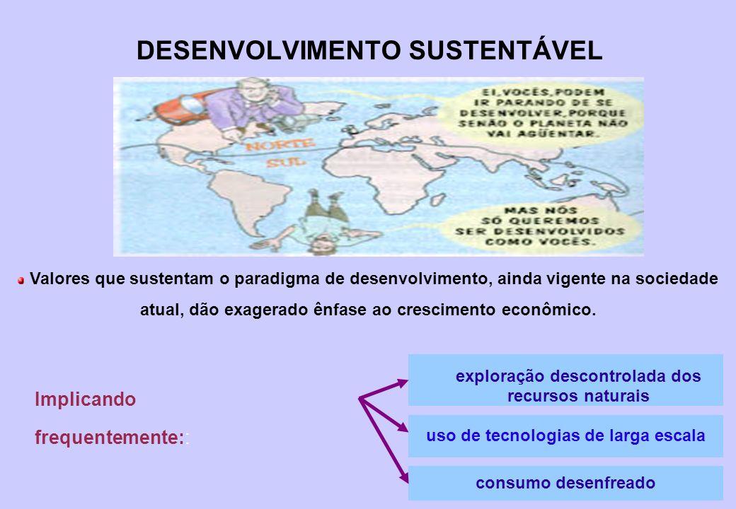 12 UNCED ( UNITED NATIONS CONFERENCE ON ENVIRONMENT AND DEVELOPMENT) (Rio de Janeiro 1992 – 170 PAISES – 25 MIL PESSOAS) (CÚPULA DA TERRA – Eco 92 ) - resolução 44/228 ressalta – durante a preparação da unced * proteção ambiental deve ser enfocada com íntima relação entre a pobreza e degradação * reconhece que os países desenvolvidos causam a maioria dos problemas de poluição e que terão a maior responsabilidade em combatê-los * sugere que recursos e tecnologias devem ser colocadas à disposição dos paises em desenvolvimento para reverter o processo de degradação ambiental * encontrar solução urgente e eficaz para o problema das dívidas externas, requisito fundamental para a estratégia de desenvolvimento sustentável