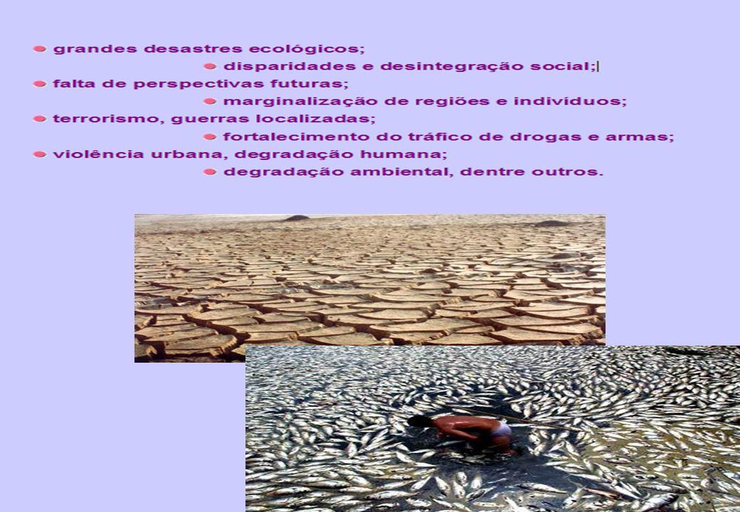 14 - A CONVENÇÃO DO CLIMA; - A CONVENÇÃO DA BIODIVERSIDADE; - DECLARAÇÃO DO RIO; - PRINCÍPIOS SOBRE FLORESTAS.