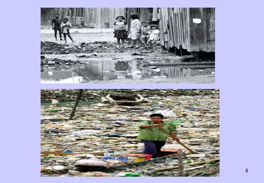 19 Sugestões Gerais para o Desenvolvimento Sustentável: OBS: faltam sugestões para a área social.