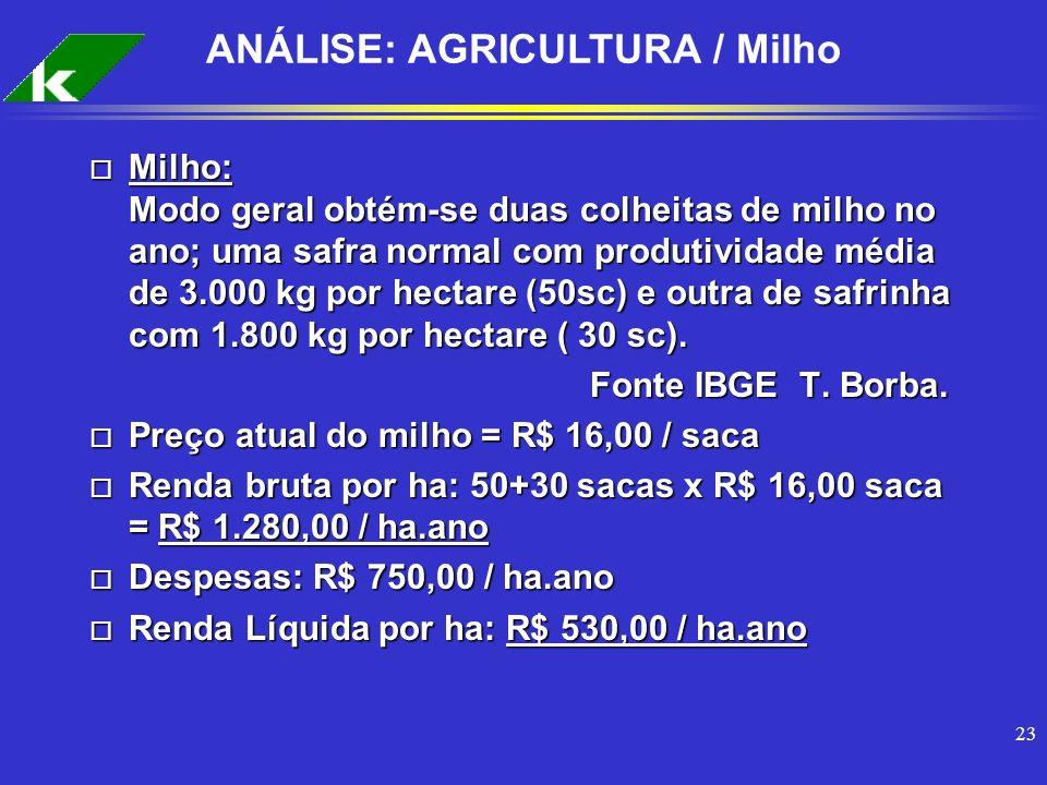 23 ANÁLISE: AGRICULTURA / Milho o Milho: Modo geral obtém-se duas colheitas de milho no ano; uma safra normal com produtividade média de 3.000 kg por
