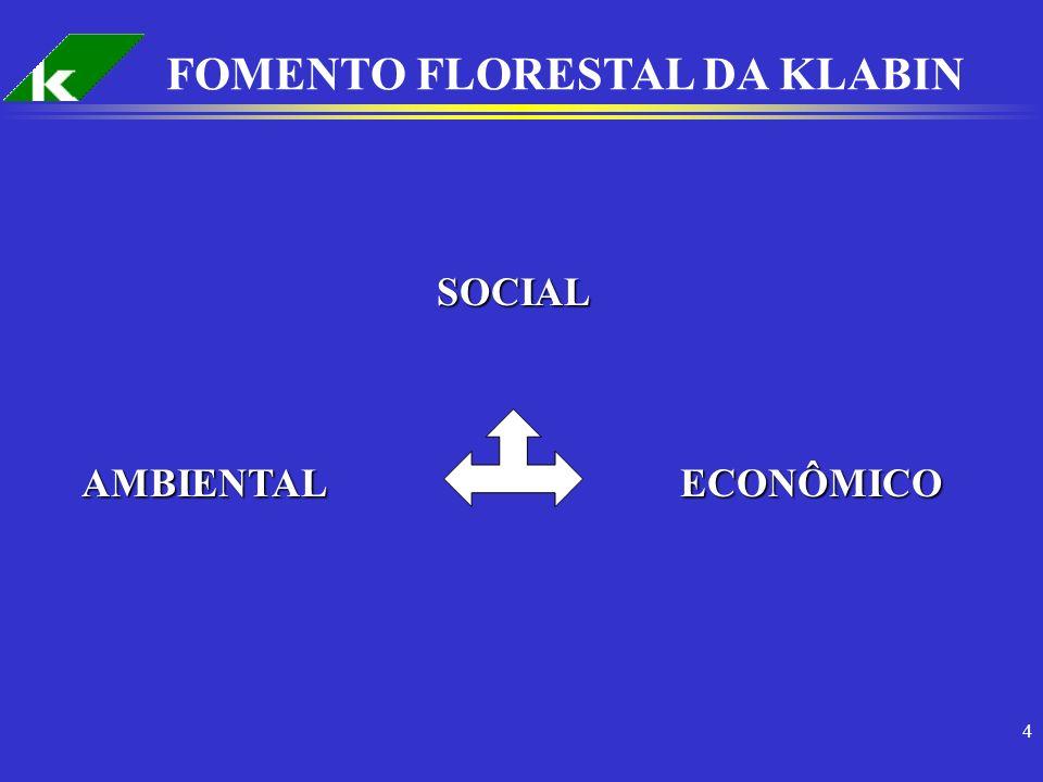 15 FOMENTO FLORESTAL NA KLABIN MODALIDADE - VENDA DE MUDAS: 4.