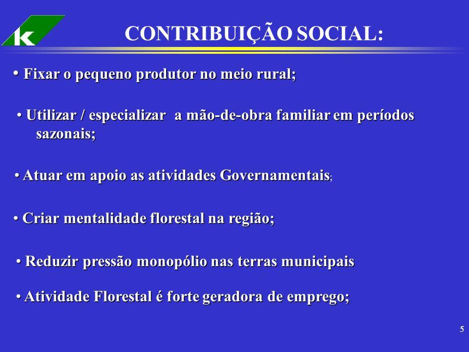 5 CONTRIBUIÇÃO SOCIAL: Fixar o pequeno produtor no meio rural; Fixar o pequeno produtor no meio rural; Utilizar / especializar a mão-de-obra familiar