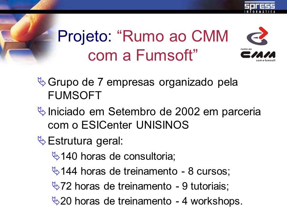 Grupo de 7 empresas organizado pela FUMSOFT Iniciado em Setembro de 2002 em parceria com o ESICenter UNISINOS Estrutura geral: 140 horas de consultori