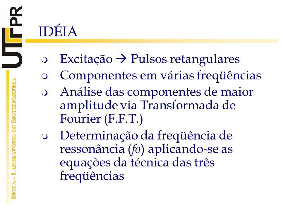 IDÉIA Excitação Pulsos retangulares Componentes em várias freqüências Análise das componentes de maior amplitude via Transformada de Fourier (F.F.T.)