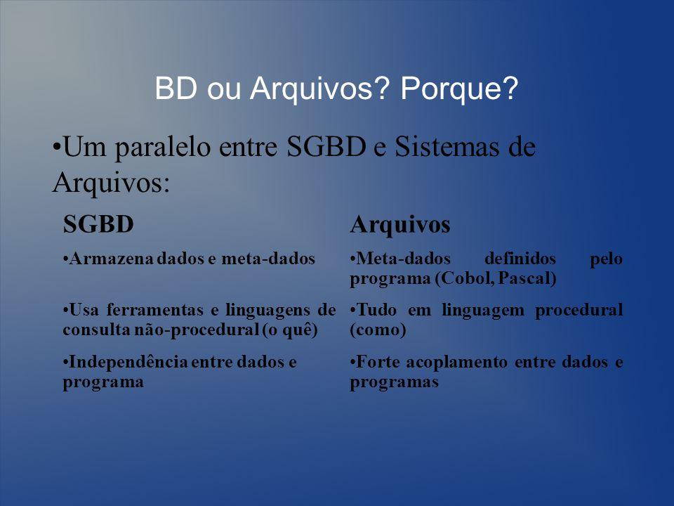 BD ou Arquivos? Porque? SGBDArquivos Armazena dados e meta-dadosMeta-dados definidos pelo programa (Cobol, Pascal) Usa ferramentas e linguagens de con