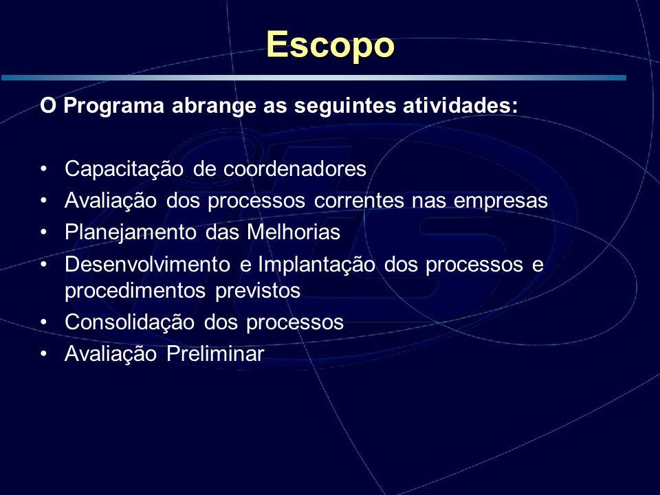 Escopo O Programa abrange as seguintes atividades: Capacitação de coordenadores Avaliação dos processos correntes nas empresas Planejamento das Melhor