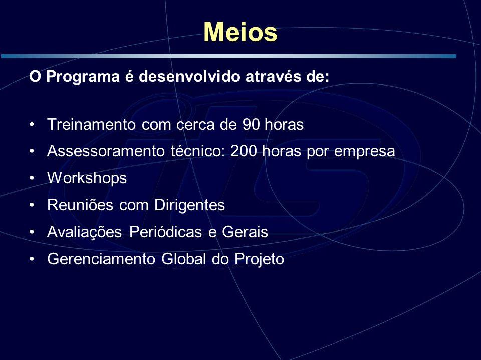 Meios O Programa é desenvolvido através de: Treinamento com cerca de 90 horas Assessoramento técnico: 200 horas por empresa Workshops Reuniões com Dir
