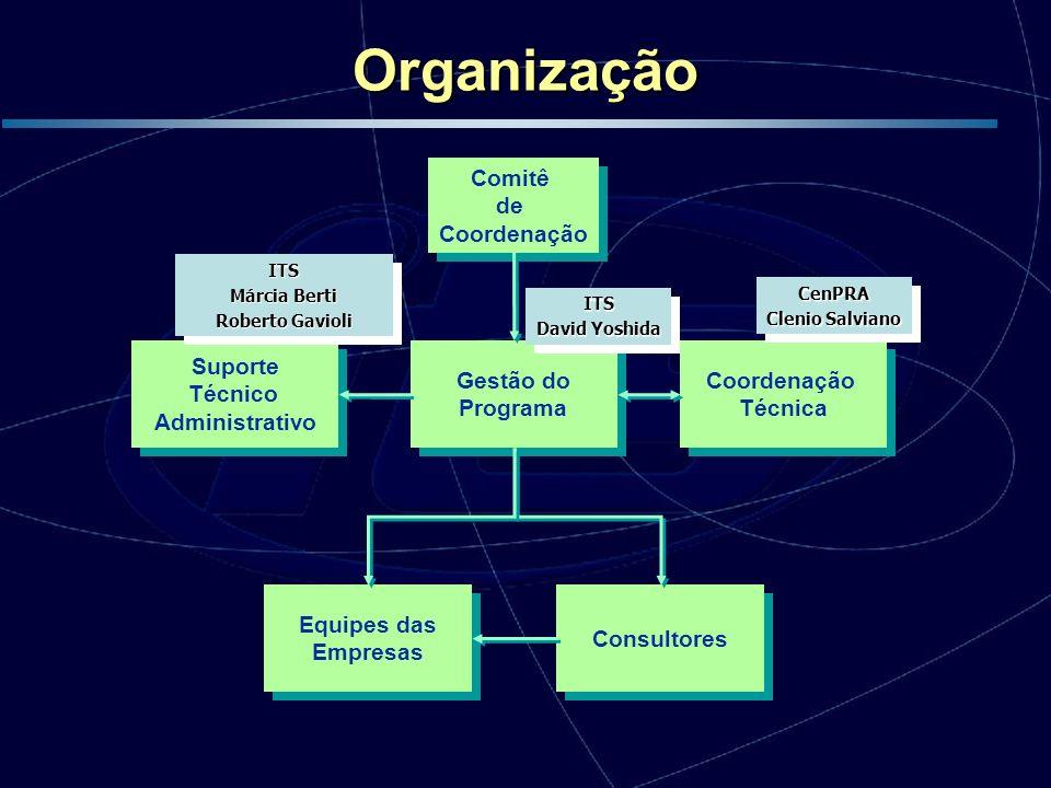 Equipes das Empresas Equipes das Empresas Consultores Suporte Técnico Administrativo Suporte Técnico Administrativo Gestão do Programa Gestão do Progr