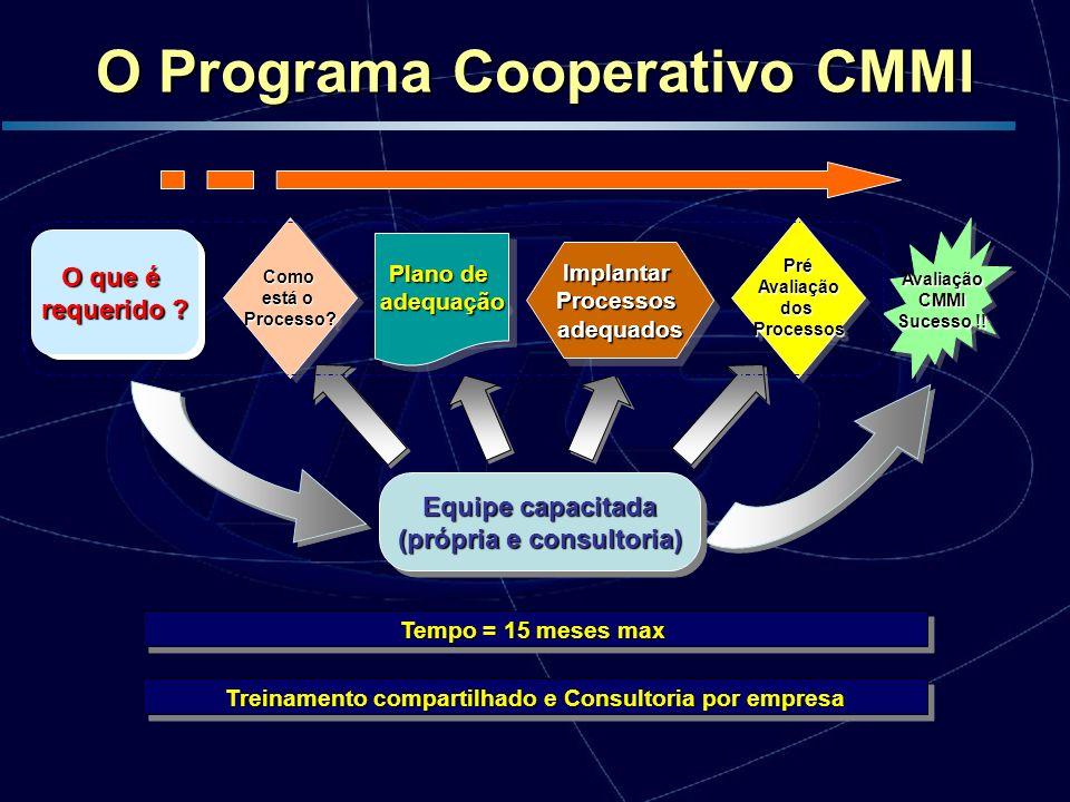 Desenvolvimento O programa é desenvolvido por profissionais brasileiros, conhecedores dos modelos de maturidade e vivência em implantação de processos de desenvolvimento e produção de software.