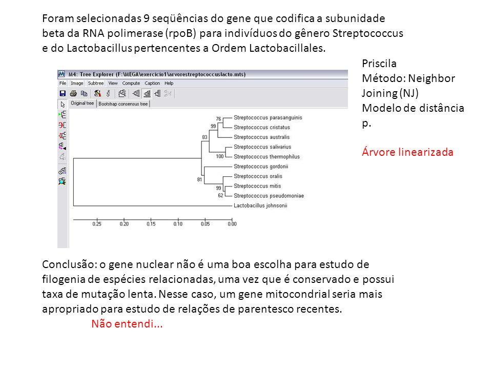 Priscila Método: Neighbor Joining (NJ) Modelo de distância p. Árvore linearizada Conclusão: o gene nuclear não é uma boa escolha para estudo de filoge